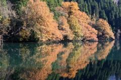 片地の池の紅葉